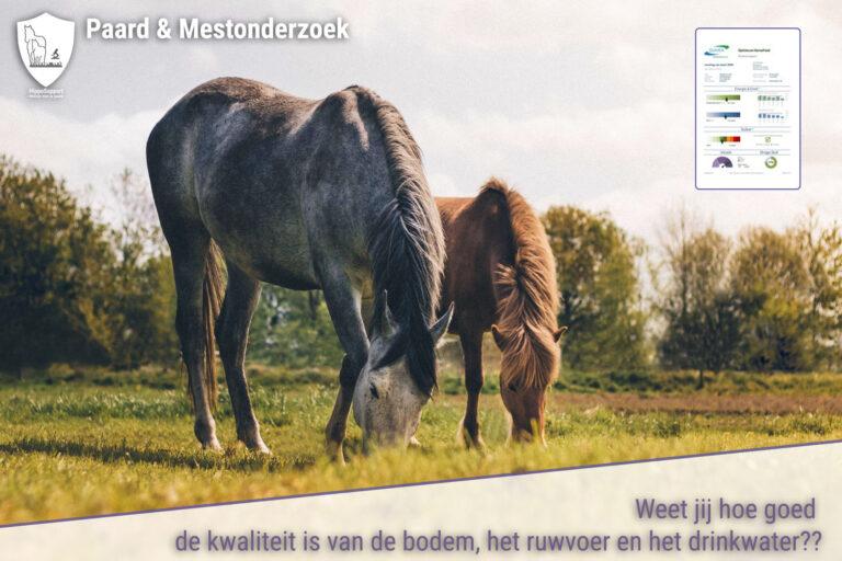 Lees meer over het artikel HORSE FEED QUICKSCAN RUWVOERANALYSE NU BESCHIKBAAR IN ONZE WEBSHOP