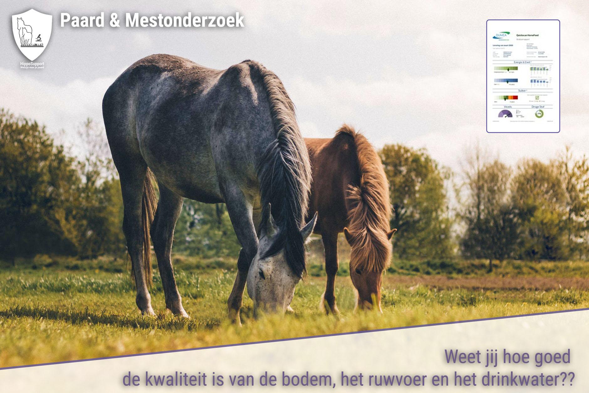 HORSE FEED QUICKSCAN RUWVOERANALYSE NU BESCHIKBAAR IN ONZE WEBSHOP
