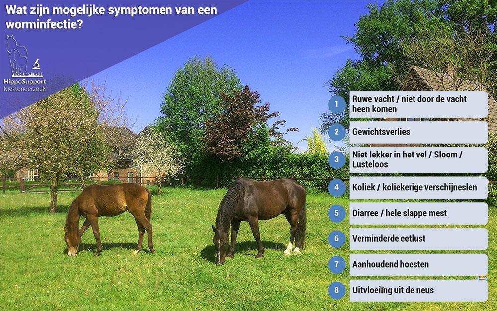 Kun je aan een paard zien of hij een worminfectie heeft?